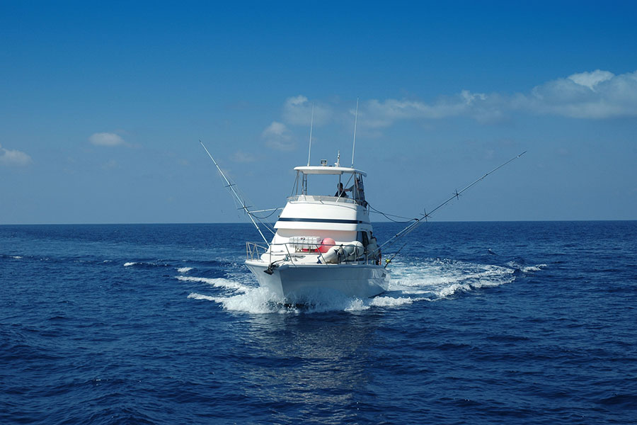 fishing charter on the water